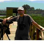 Birding in Valencia, Spain  (feature post)